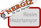 hazir2